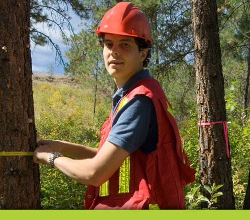 Arbortrim Training