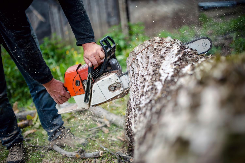chainsaw-banner