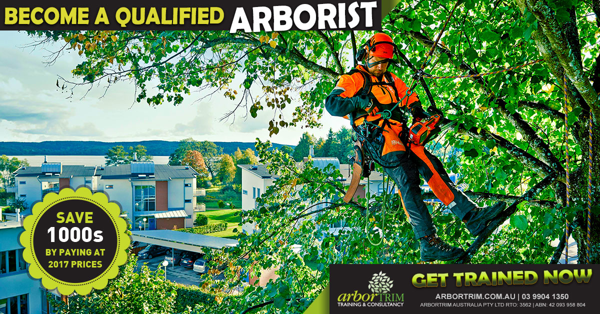 facebook-likes-certificate-iii-in-arboriculture