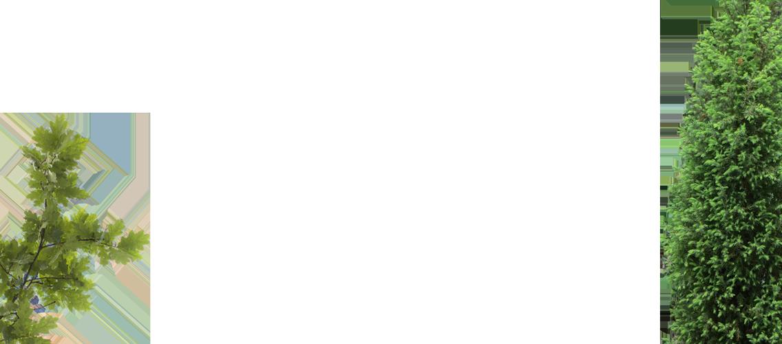 layer-slider-tree