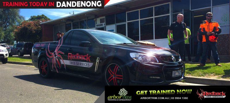 Training today | Arbortrim – Dandenong | Redback Tree Services